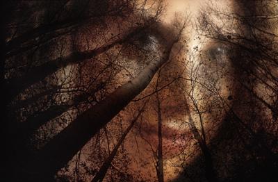 Scott Weingarten at Windows Gallery