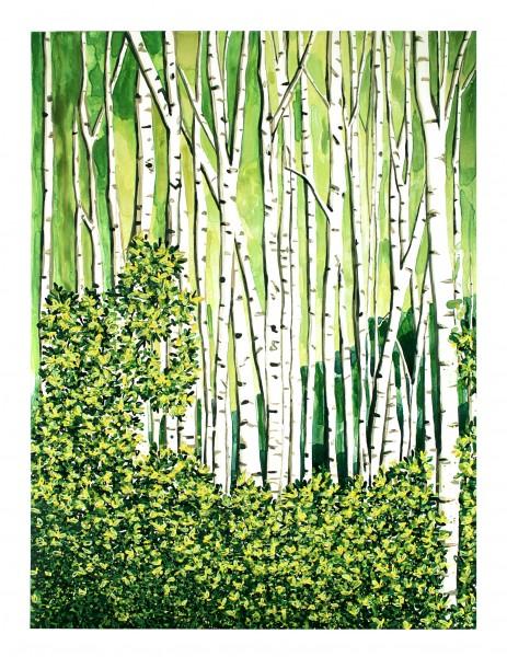 Annika Connor Birch Forest (2)