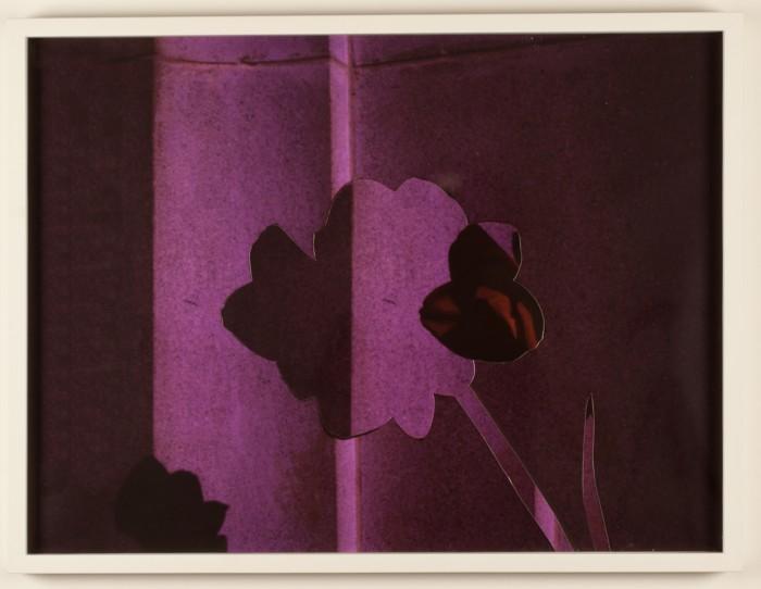 Garrett Pruter 1987 - Interior III (flower), 2013 collage 18 x 24 inches