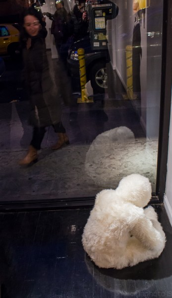 How much is that Fuzzy Thing in the Window_