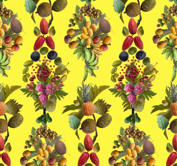 Public Fruit Wallpaper Honolulu  in yellow by Fallen Fruit