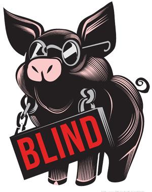 BLIND_PIG_©AROCENA_PS edit