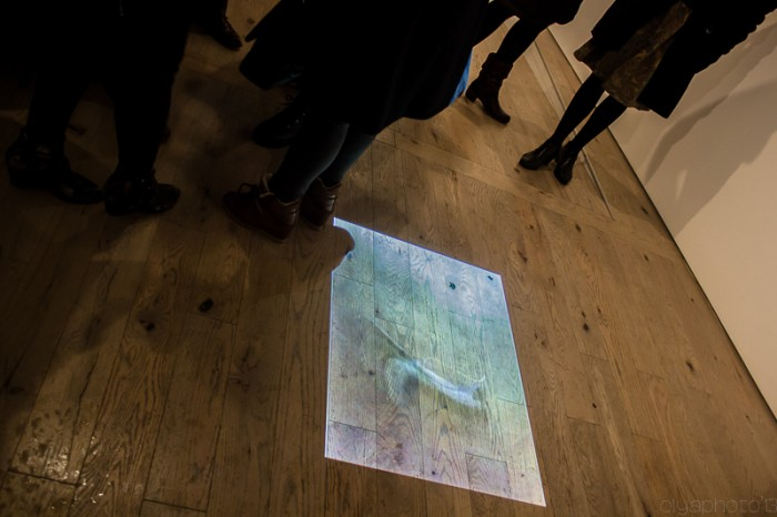 Tamas Veszi's art video installation