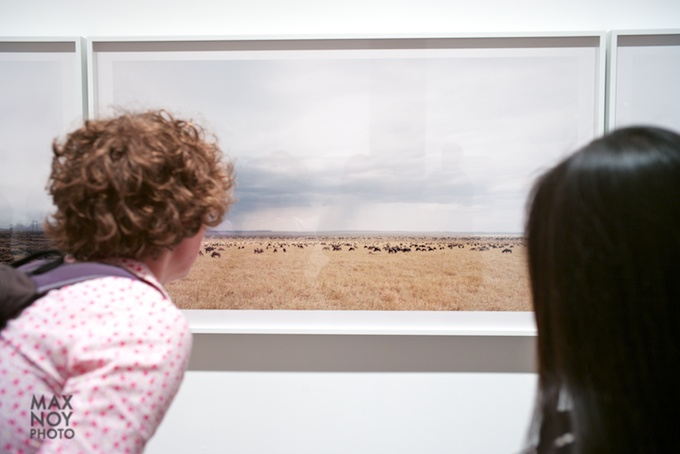 Perusing the horizon line of Sze Tsung Leong's Photo