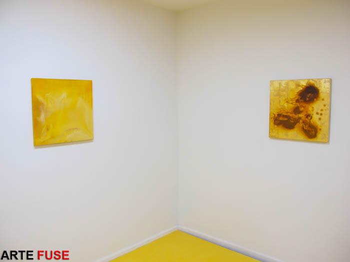 Installation shot of Elise Adibi show at Louis B. James