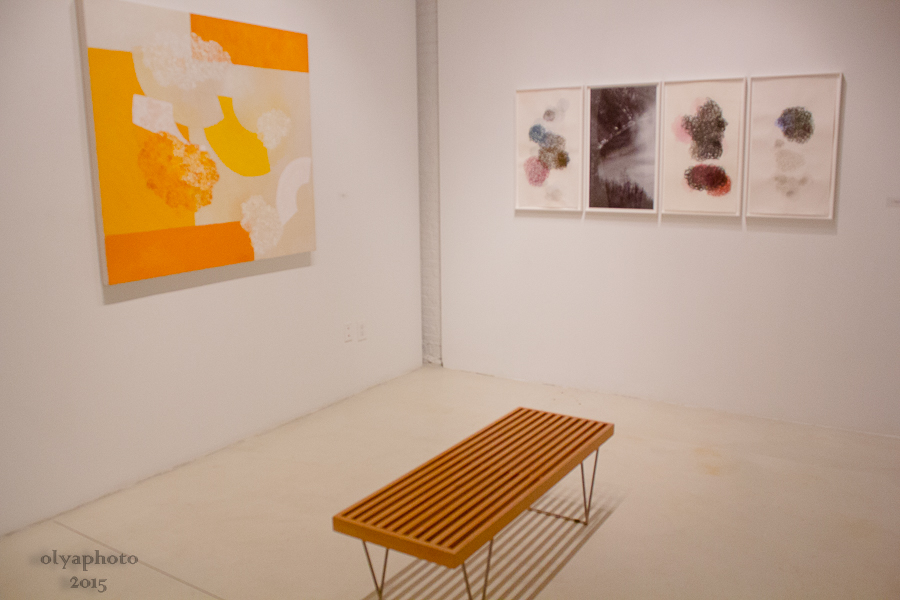 Installation shot of Denise Green exhibit at Sundaram Tagore Gallery