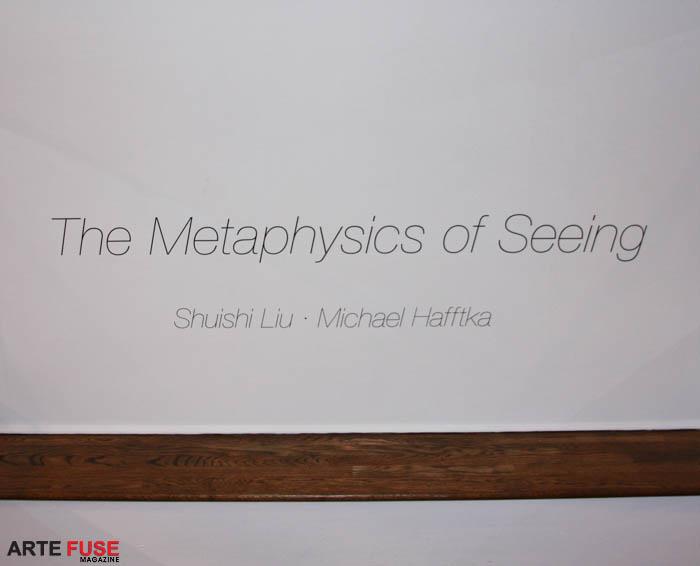 Shuishi Liu and Michael Hafftka: Metaphysics of Seeing
