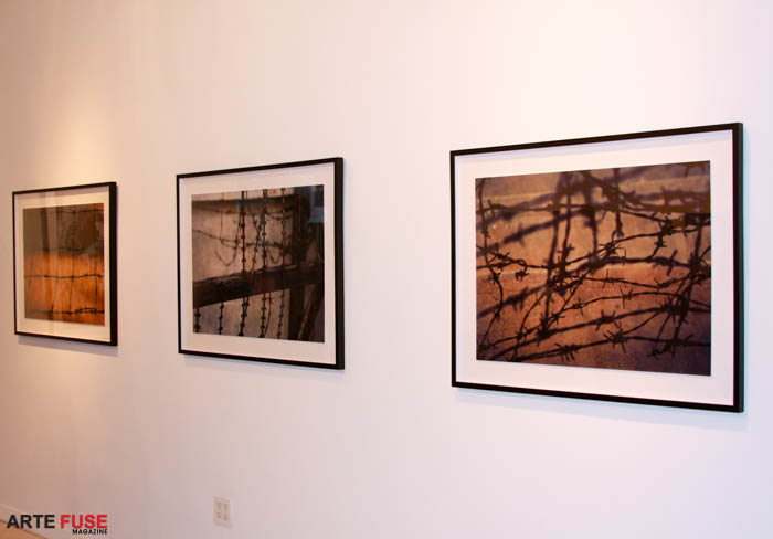 Three photographs by Indira Cesarine.