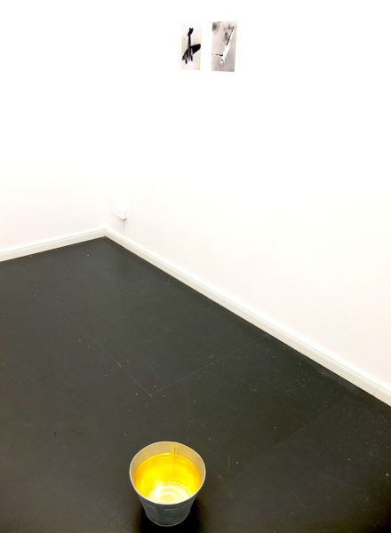 Exhibition view, Freitag, der 13.   יום שישי ה- 13 , CIRCLE1, Foto: Hannah Beck-Mannagetta, works: Ronit Porat, Not my uncle's (Marcus Banyan, Vertical) (from the Hippocampus series of works), 2011, Courtesy the artist / Ronit Porat, Untitled (Olympia 1938, Leni Riefenstahl) (from the Hippocampus series of works), 2012, Courtesy the artist / Matti Isan Blind, NO END, NO RAINBOW, 2014