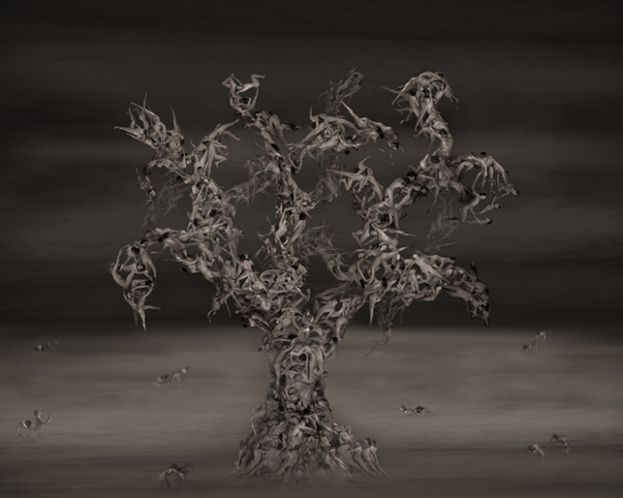 Robert Bianchi, Tree, 2015, Digital Chromogenic Print, X:48; Y:66 inches