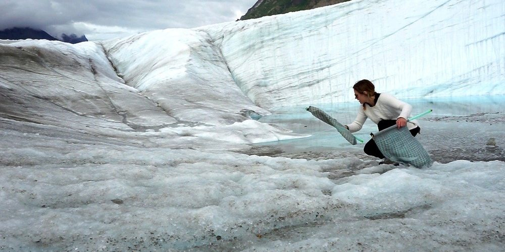 Video Still from Initial Encounters: Like Meets Like, Iceberg and Glacier, now on view at Field Projects